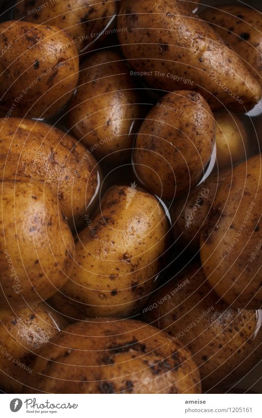 Potato   Solid cooking (2) Food Vegetable Potatoes Nutrition Organic produce Nature Elements Earth Water Eating Brown Yellow Black Appetite Lunch Dinner
