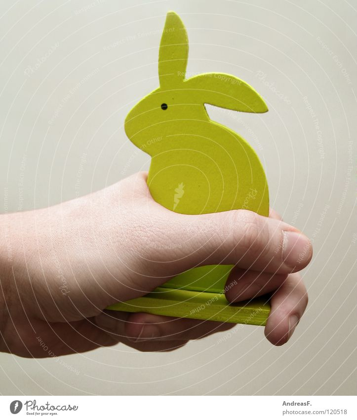 Tame. Hare & Rabbit & Bunny Easter Wood Hand Peace To hold on Captured Under control Pet Caress Petting zoo Mammal Easter Bunny Smooth tame wood bunny
