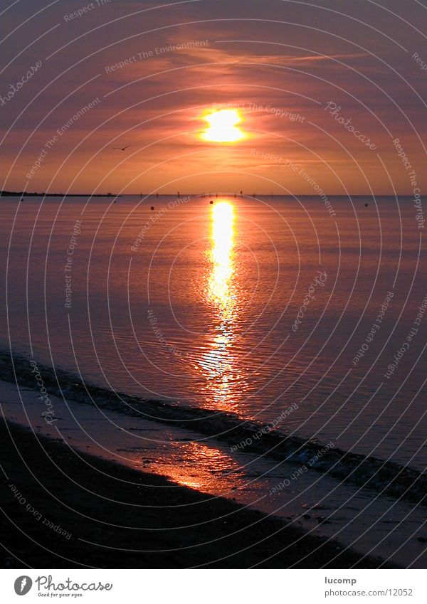Water Sun Ocean Red Beach Waves Horizon Romance Baltic Sea Dusk Sunset Flare Swell Fehmarn