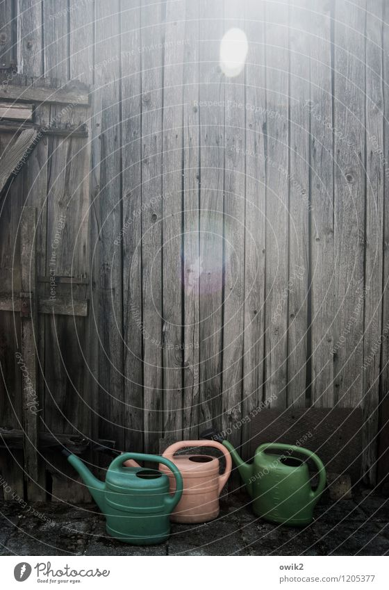 Wall (building) Wall (barrier) Wood Stand Wait Curiosity Plastic Under In transit Barn Wooden wall Lens flare Watering can