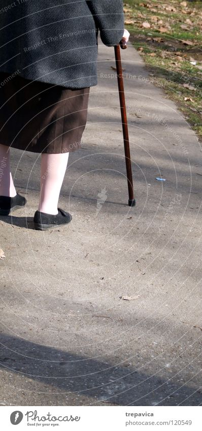 Woman Human being Old Street Autumn Life Senior citizen Movement Legs Healthy Brown Footwear Going Walking Health care To go for a walk