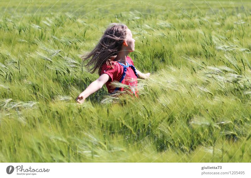 """""""Only flying is better!"""" Girl with wind in her hair in a cornfield Playing Child girl Infancy Life 1 Human being 8 - 13 years Sun spring Beautiful weather Plant"""