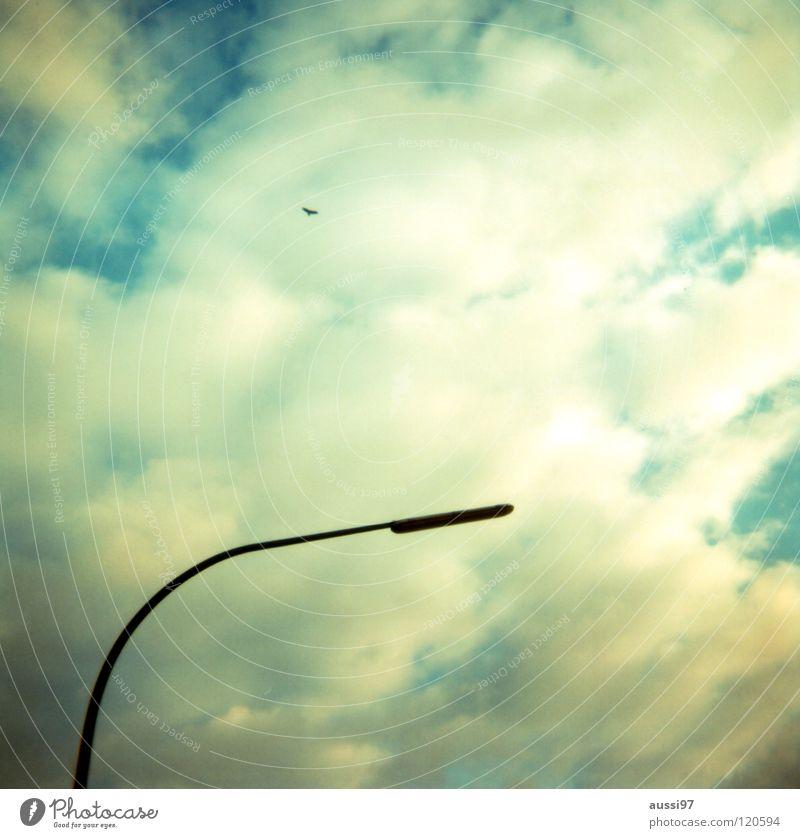 Sky Loneliness Far-off places Lighting Lamp Communicate Street lighting Lantern Analog God Deities Shaft of light