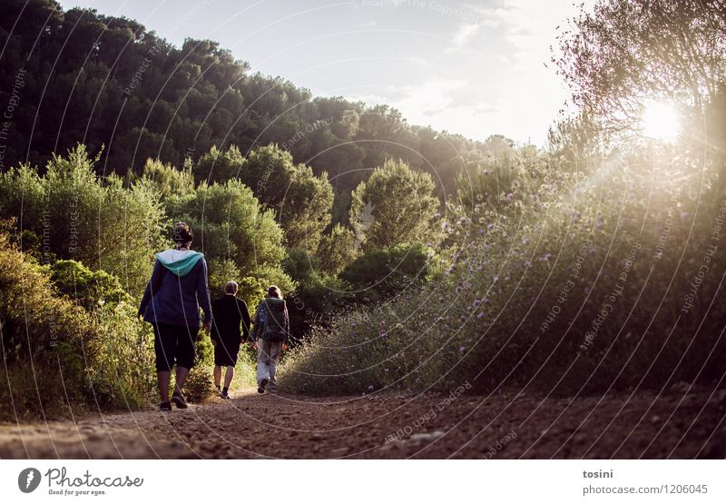 on the way Human being Masculine Feminine Young woman Youth (Young adults) Young man Friendship Couple Partner 3 Bright Hiking Lanes & trails Summer Backpack