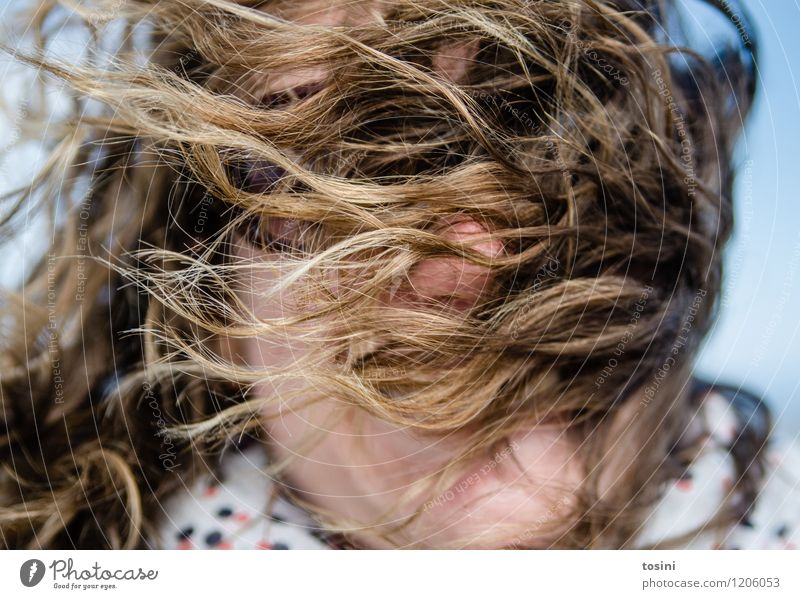 Human being Woman Nature Young woman Face Adults Feminine Laughter Hair and hairstyles Head Wild Weather Wind Crazy Climate Gale