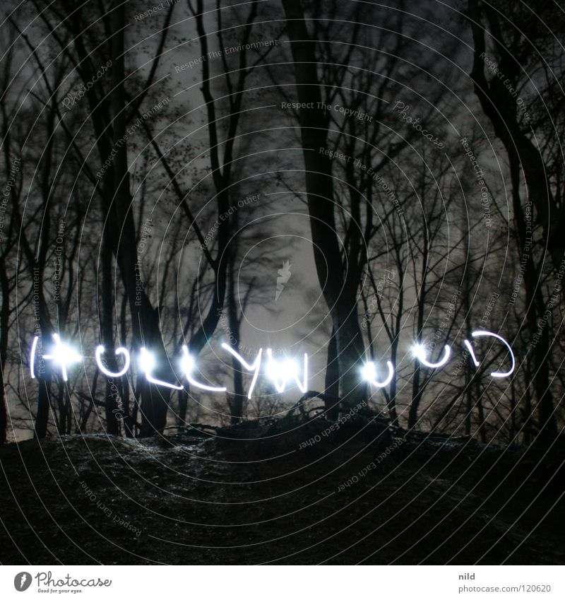 Forest Fear Film industry Write Panic Fantasy literature Media Hollywood Handwriting Los Angeles
