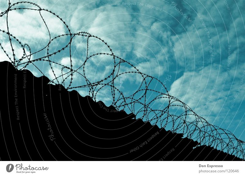 Guantanamo Freedom Sky Clouds Wall (barrier) Wall (building) Blue Safety Force Barbed wire Fence Captured Penitentiary Guard Jail sentence Convict Confine