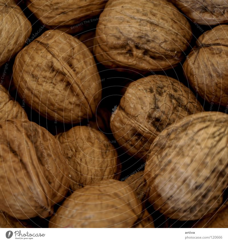 Background picture Wood flour