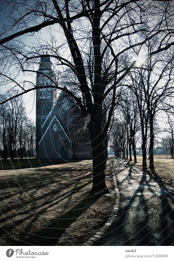 church path Sky Climate Beautiful weather Tree Park Church Manmade structures Freeze Illuminate Large Tall Hope Belief Idyll Religion and faith