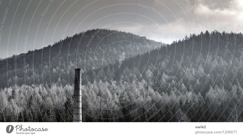 In the border triangle Environment Nature Landscape Plant Sky Clouds Winter Beautiful weather Ice Frost Tree Forest Mountain Zittau Mountains Manmade structures