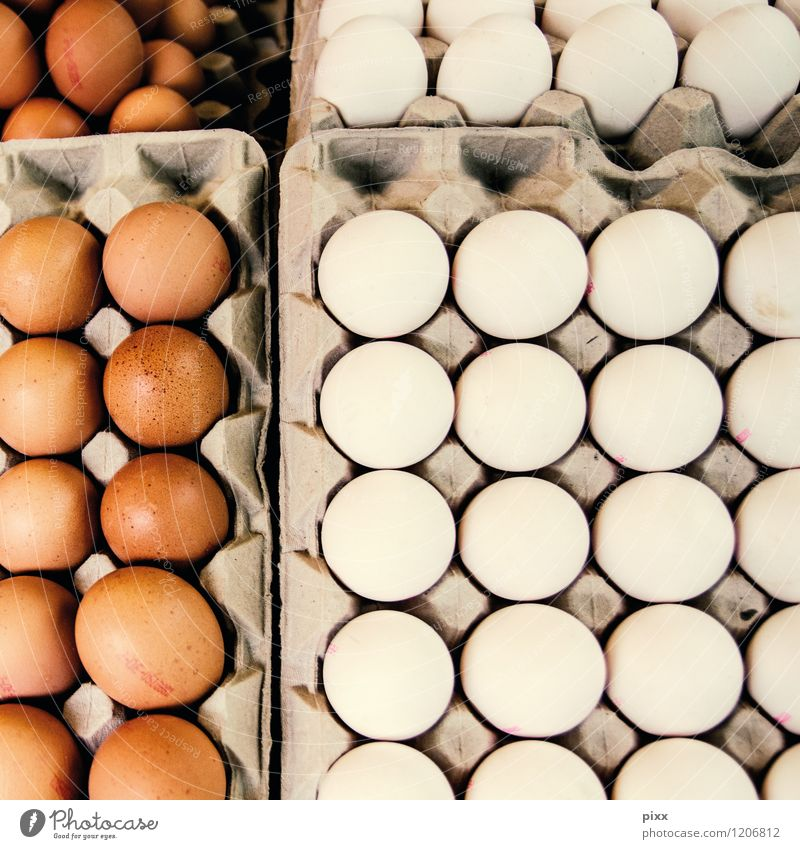 market day Food Egg Eggs cardboard Palett Nutrition Breakfast Buffet Brunch Organic produce Slow food Agriculture Forestry Logistics Gastronomy Animal