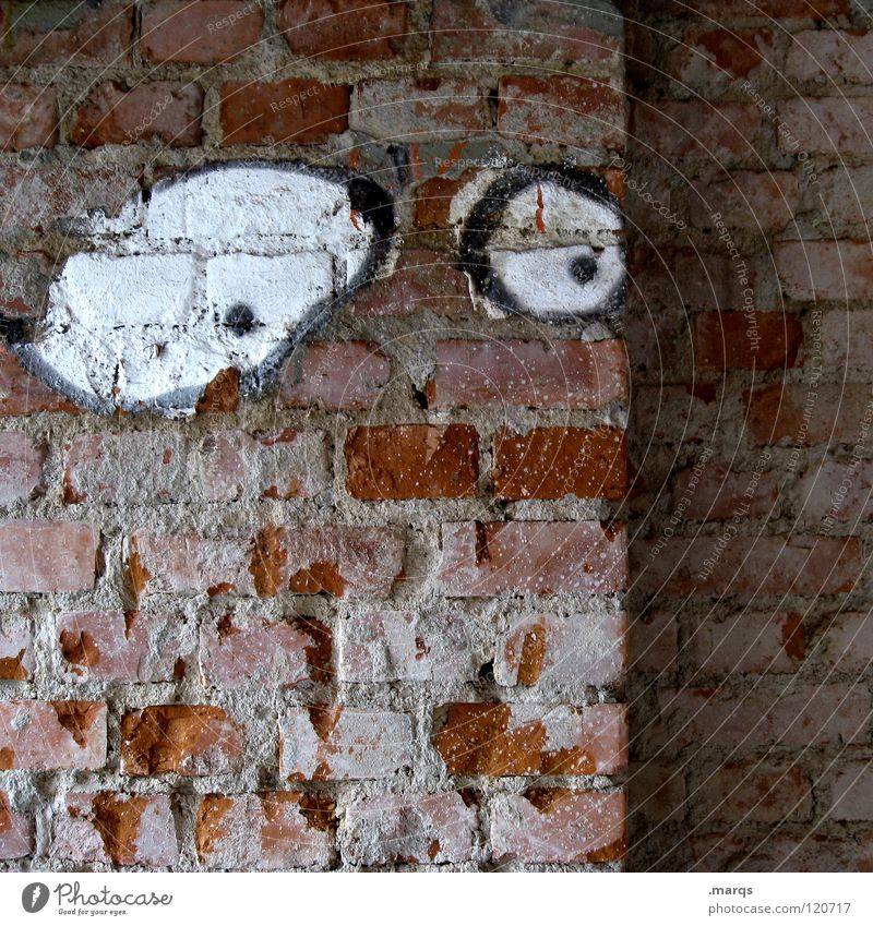Eyes Wall (building) Graffiti Wall (barrier) Fear Obscure Concern Panic Amazed Agitated Scare Mural painting Disbelief