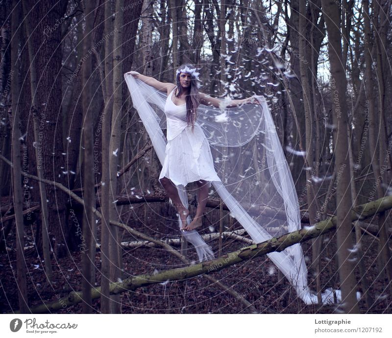 psithurism - (n.) the sound of the wind through trees Human being Feminine Young woman Youth (Young adults) 1 18 - 30 years Adults Art Nature Air Tree Forest