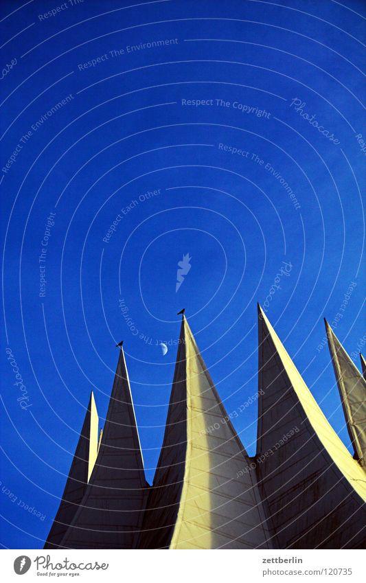 Sky Blue Berlin Architecture Bird Concrete Modern Roof Culture Point Club Moon Landmark Event Construction Sky blue