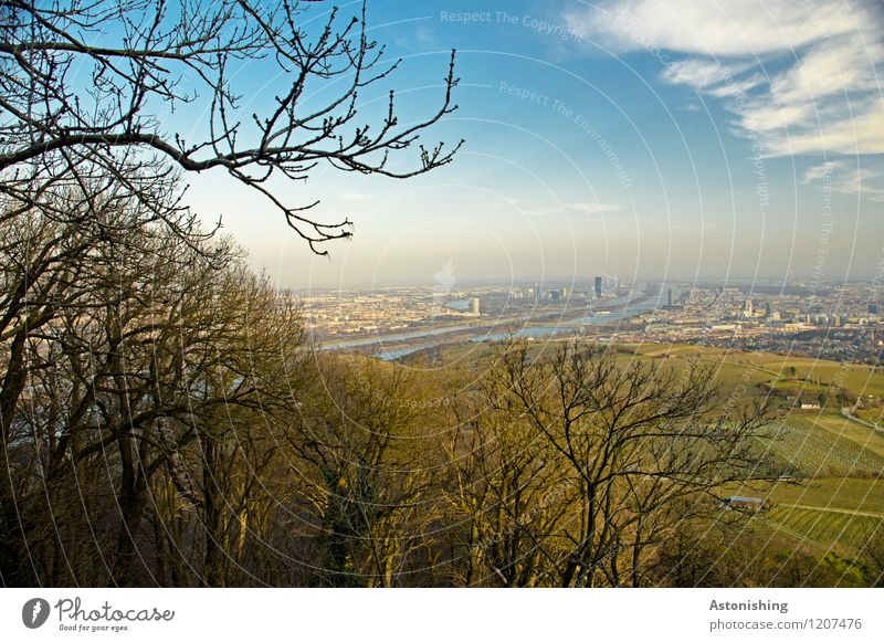 View of Vienna 1 Environment Nature Landscape Air Sky Clouds Horizon Spring Weather Beautiful weather Plant Tree Forest Hill River Danube Austria Town