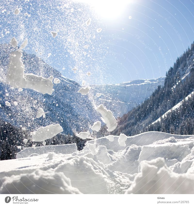 Gone with snow Forest White Crumbs Flake Avalanche Winter Snow Mountain Wind Blue Sun Fragment Stars