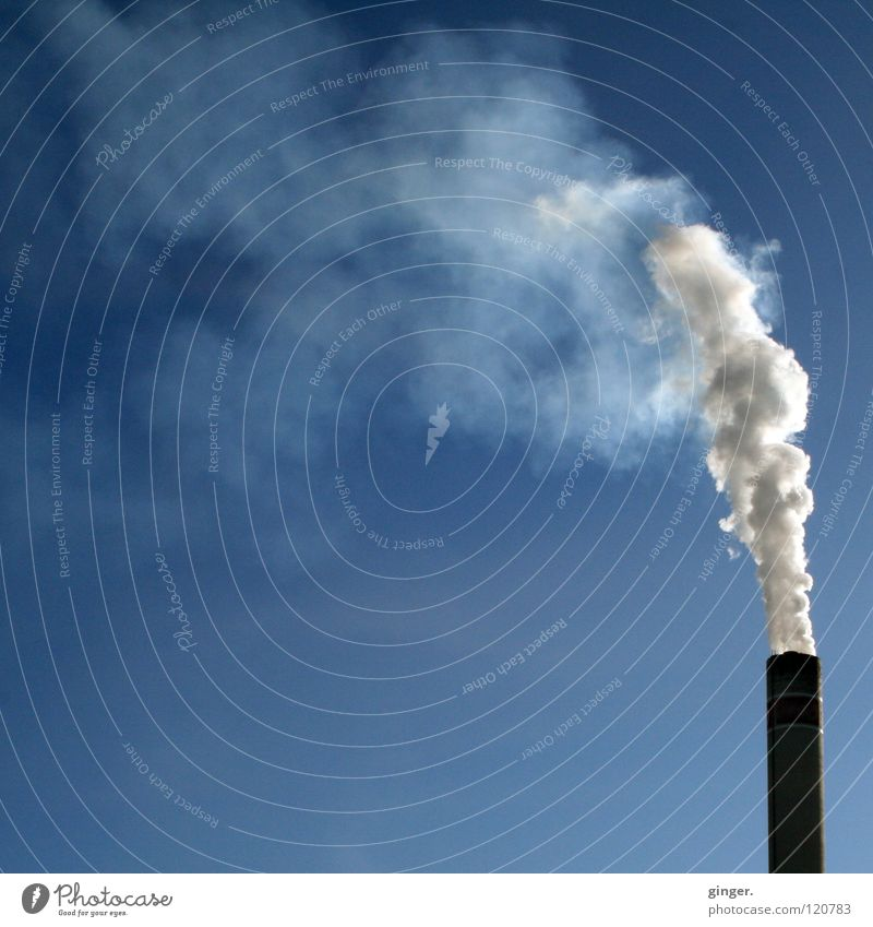White grey in blue Industry Sky Chimney Smoke Tall Blue Gray Blow Emission Environmental pollution Blue sky Copy Space left Copy Space top Copy Space middle