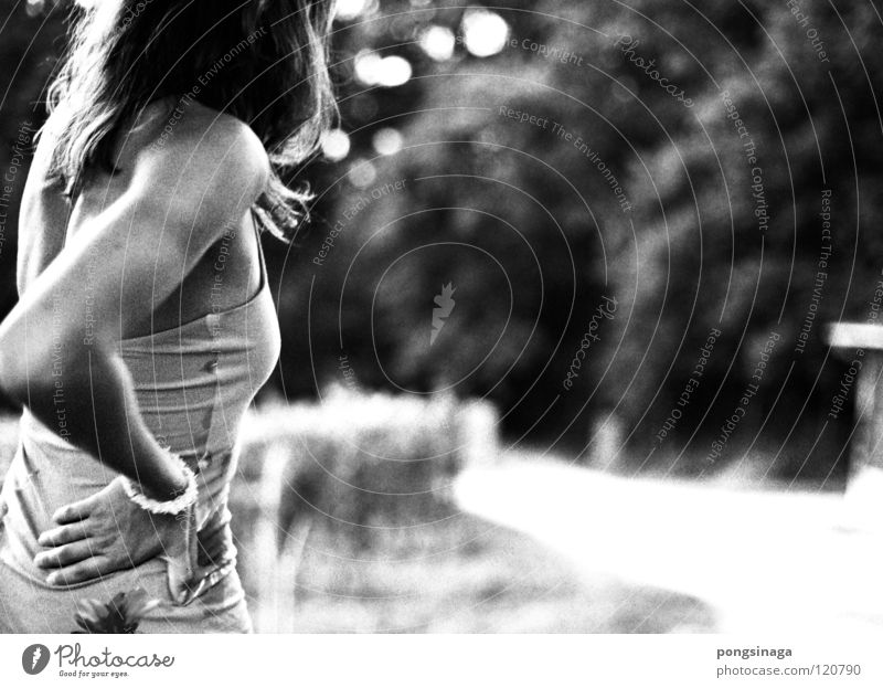 straight forward Edge of the forest Summer evening Youth (Young adults) Black & white photo Woman Back coarse grain wallpapers Lorettoberg Beautiful