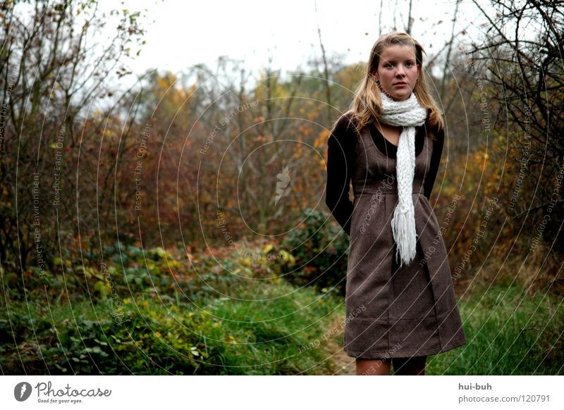Abay Forest Fairy tale Blonde Winter Cold Cap Dress Freeze Photo shoot Youth (Young adults) Fresh Young woman Young lady Woman Bushes Meadow Tree Green Autumn