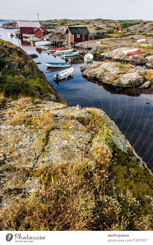 Fishing port on Käringön Vacation & Travel Tourism Trip Freedom Environment Nature Landscape Plant Elements Summer Beautiful weather Rock Waves Coast Bay Fjord