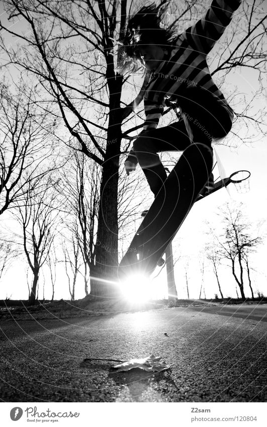 go skating Dusk Action Skateboarding Contentment Kickflip Salto Jump Striped Tar Concrete Light Tree Wide angle Youth (Young adults) Sports Leaf Funsport
