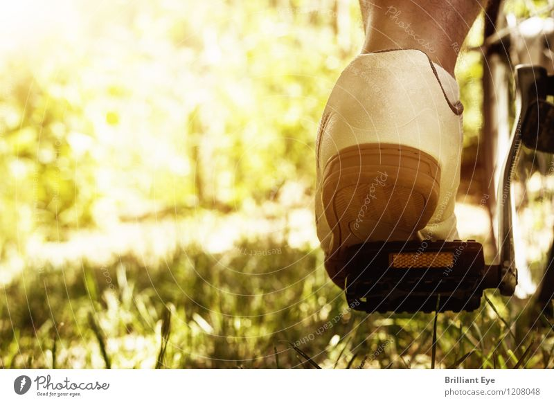 Human being Nature Plant Summer Sun Environment Yellow Movement Meadow Sports Healthy Lifestyle Bright Feet Leisure and hobbies Fresh