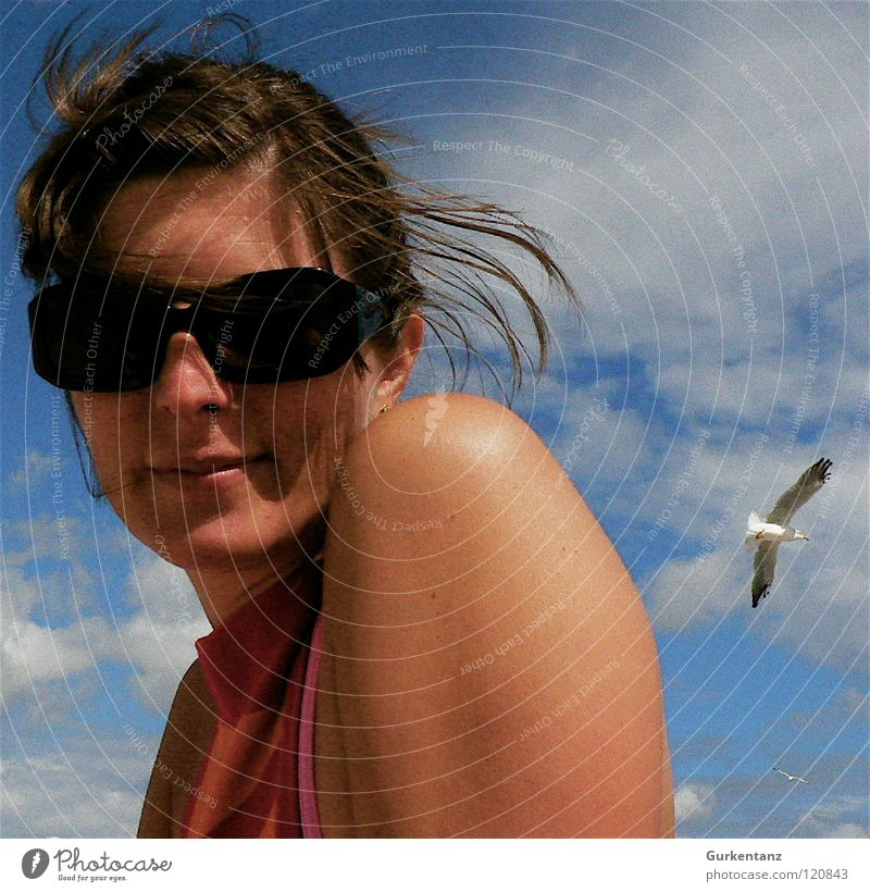 Lady Seagull Sunglasses Woman Portrait photograph Clouds Rügen Beautiful Beach Coast Sky Hair and hairstyles Wind Laughter Face Human being