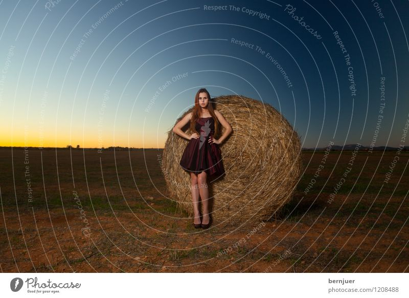 Human being Woman Youth (Young adults) Blue Beautiful Young woman Red Landscape 18 - 30 years Adults Feminine Style Brown Moody Lifestyle Elegant