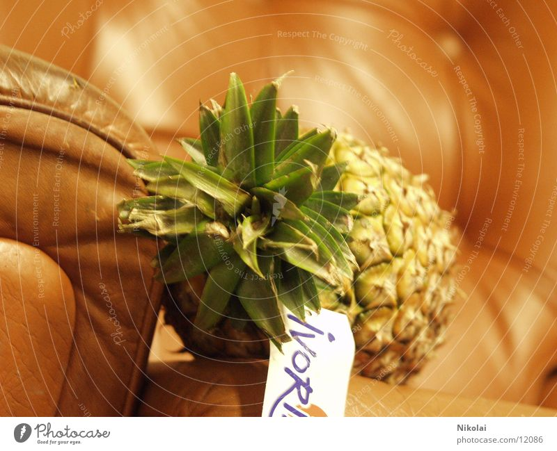Pineapple in an armchair Armchair Style Photographic technology Fruit Absurdity
