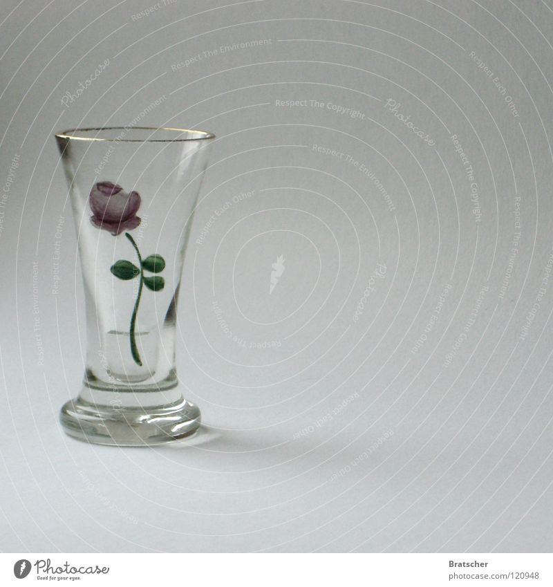 Colour Water Flower Blossom Glass Delicious Rose Gastronomy Craft (trade) Grain Still Life Edge Alcohol-fueled Vase Painted Old fashioned