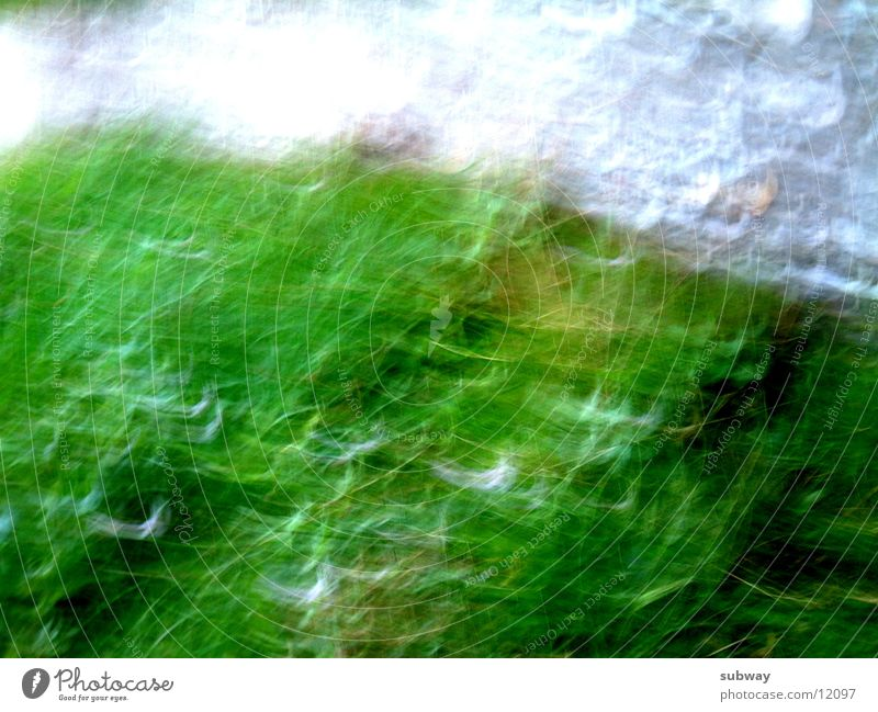 White Green Movement Senses Reaction Shake Photographic technology