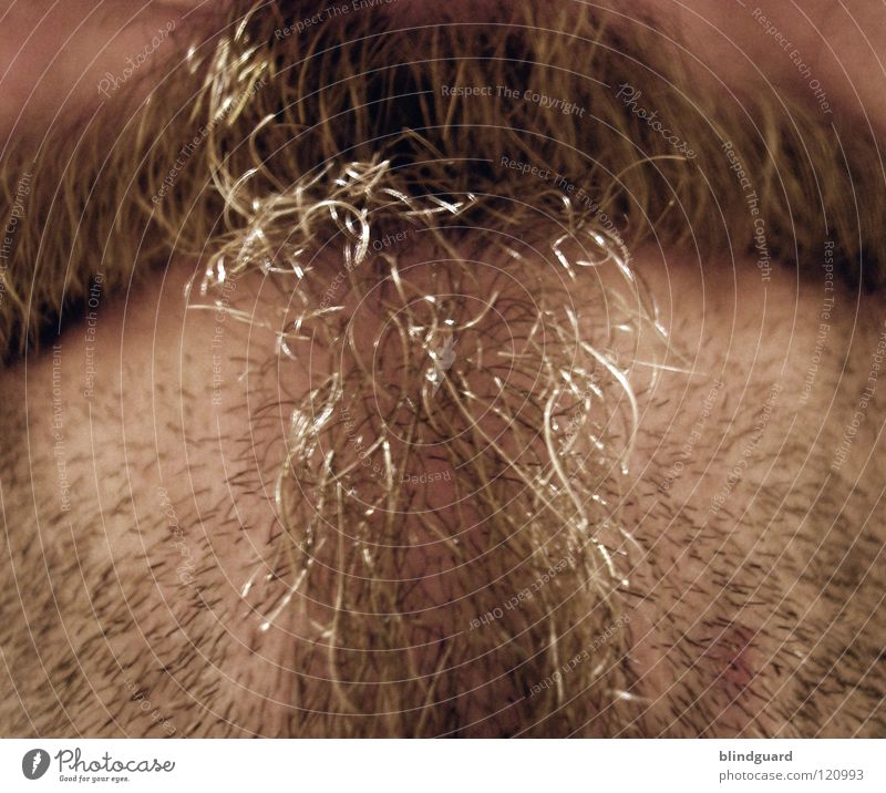 Human being Man Hair and hairstyles Skin Modern Bushes Culture Kissing Facial hair Jewellery Hairdresser Boredom King Fate Scissors