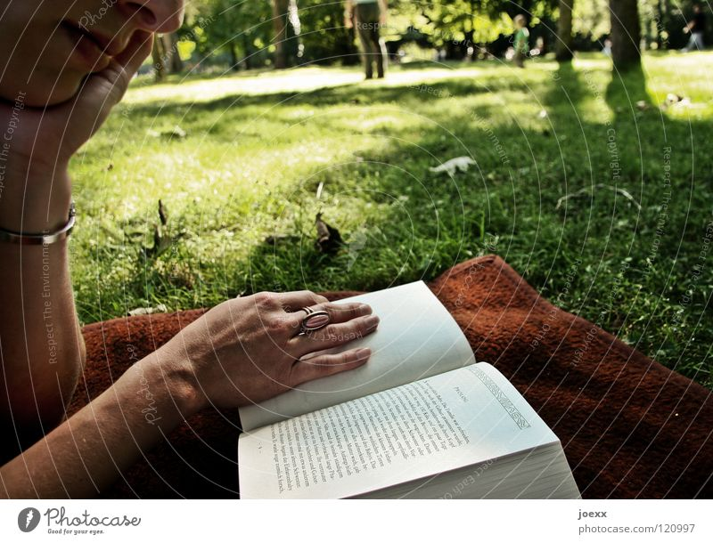 immersion Tree Book Closing time Vacation & Travel Woman Leisure and hobbies Spring Green Park Hand Young woman Reading Light Lawn for sunbathing Afternoon
