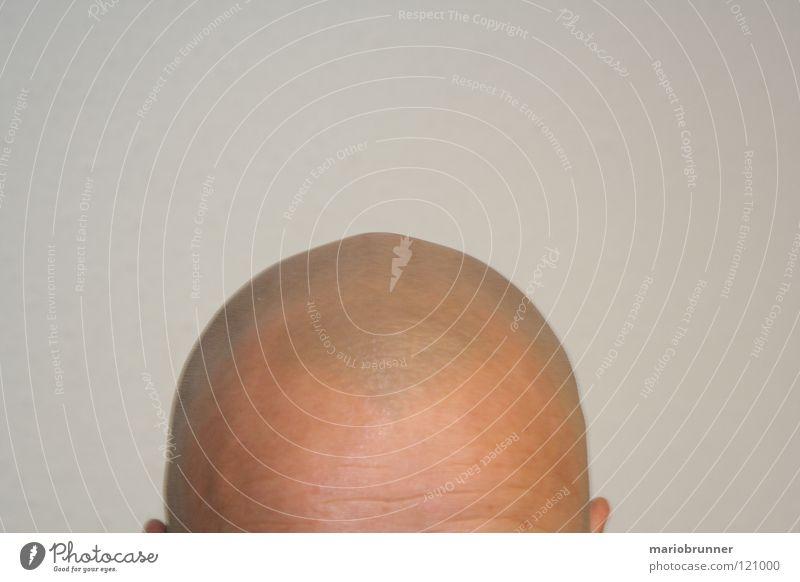 Mr. Maier Bald or shaved head Gray Forehead Man Shaven Head Skin no hair