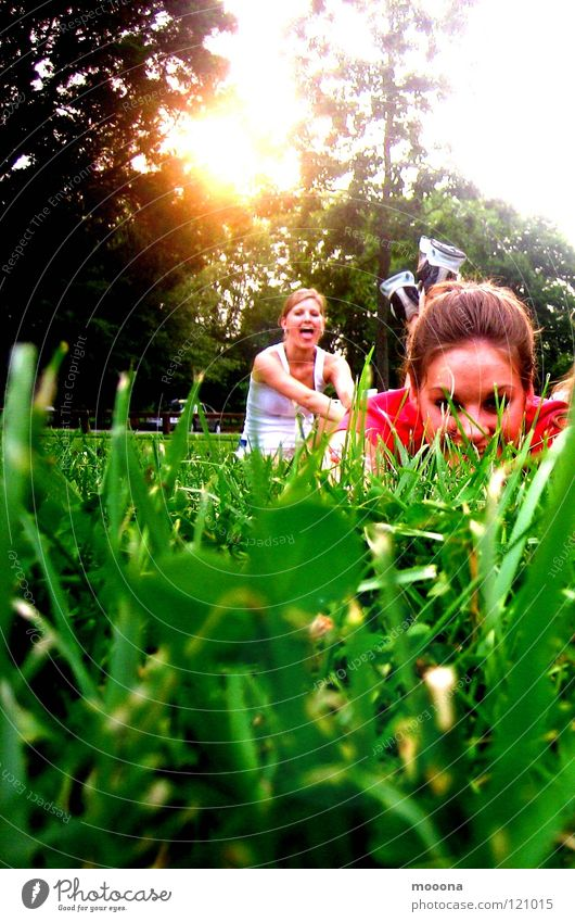 Sun Joy Meadow Warmth Grass Garden Park Physics Hide Sneakers Tongue Playground