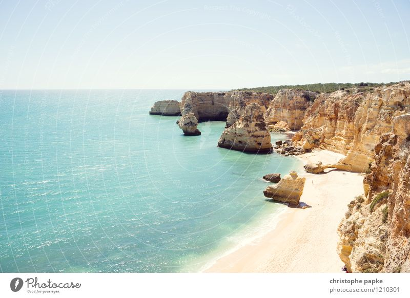 Typical Algarve Vacation & Travel Summer Sunbathing Beach Ocean Cloudless sky Beautiful weather Rock Waves Coast Bay Portugal Hot Bright Rocky coastline