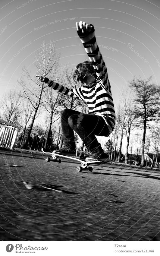 LANDING Dusk Action Skateboarding Contentment Jump Striped Tar Concrete Light Tree Wide angle Youth (Young adults) Sports Knee Pushing Funsport Movement