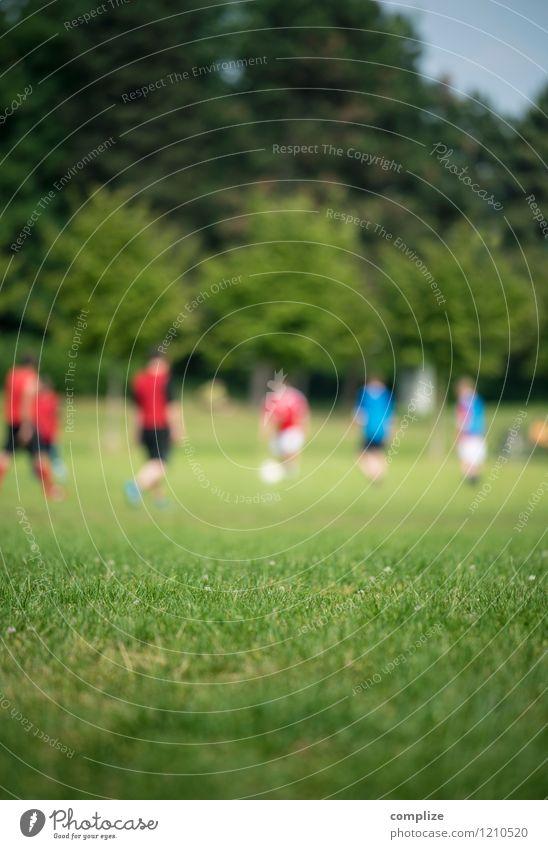 Human being Woman Man Green Sun Joy Adults Feminine Sports Playing Healthy Horizon Park Masculine Leisure and hobbies Success