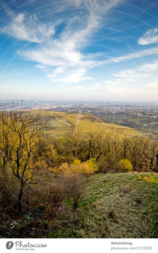 View of Vienna 2 Environment Nature Landscape Plant Air Sky Clouds Horizon Spring Weather Beautiful weather Tree Grass Bushes Meadow Forest Hill Austria Town
