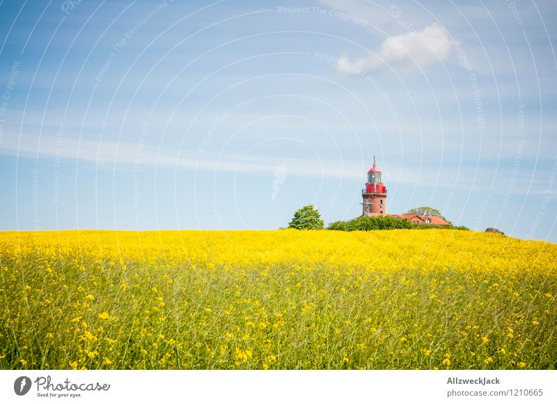 Text space left - Ostsee Edition Plant Field Village Lighthouse Old Historic Kitsch Crazy Colour photo Exterior shot Deserted Day Central perspective