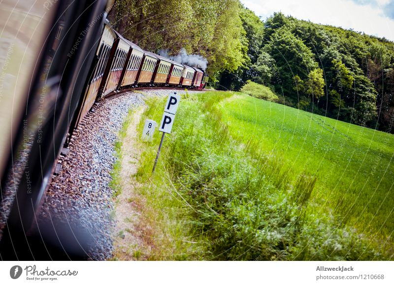 outing Spring Summer Forest Passenger traffic Rail transport Train travel Railroad Steamlocomotive Passenger train Relaxation Vacation & Travel Green Red
