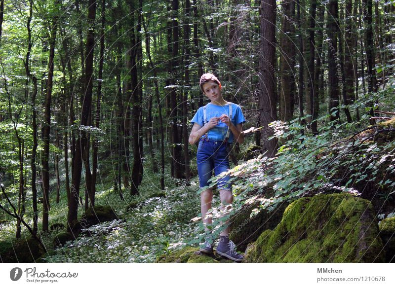 Child Nature Summer Tree Calm Far-off places Forest Mountain Boy (child) Time Freedom Rock Masculine Contentment Hiking Infancy