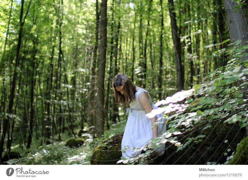 Child Nature Green White Tree Calm Girl Forest Feminine Rock Dream Infancy Stand Trip Observe Adventure