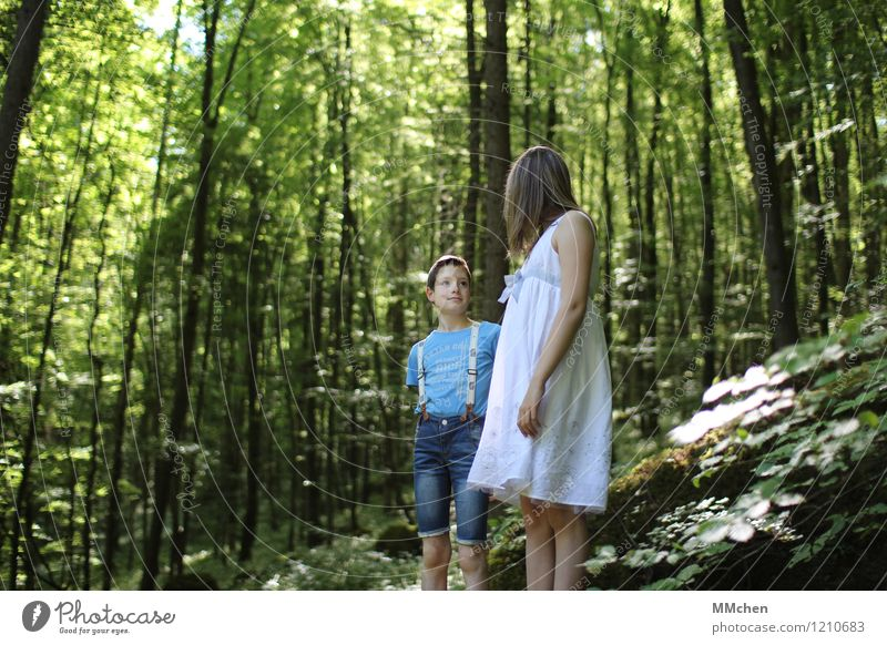 Human being Child Nature Blue Green Beautiful Summer White Girl Forest Mountain To talk Boy (child) Together Rock Friendship