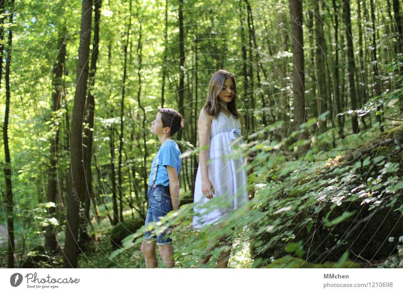 Timeless Girl Boy (child) Brothers and sisters Sister Infancy 2 Human being 8 - 13 years Child Nature Summer Tree Forest Rock Observe Stand Wait Together