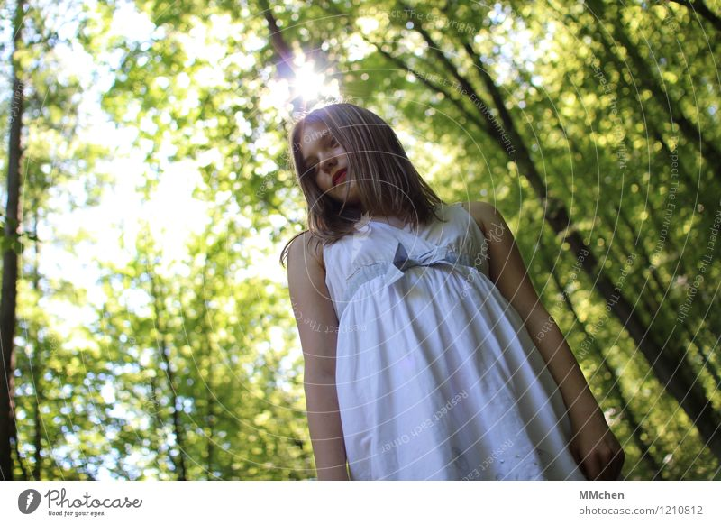 What's up? Child Girl 8 - 13 years Infancy Nature Sun Summer Tree Forest Dress Observe Discover Looking Stand Green White Serene Patient Calm Curiosity