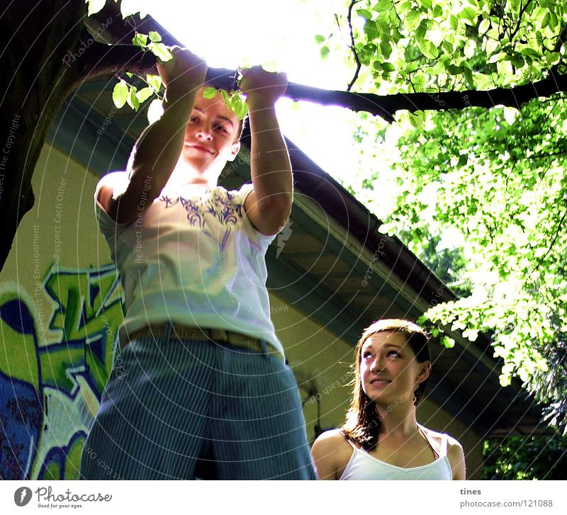 Summer in the park Tree Insecure Admiration Brothers and sisters Park Power Force Youth (Young adults) graffiti Cool (slang) Musculature