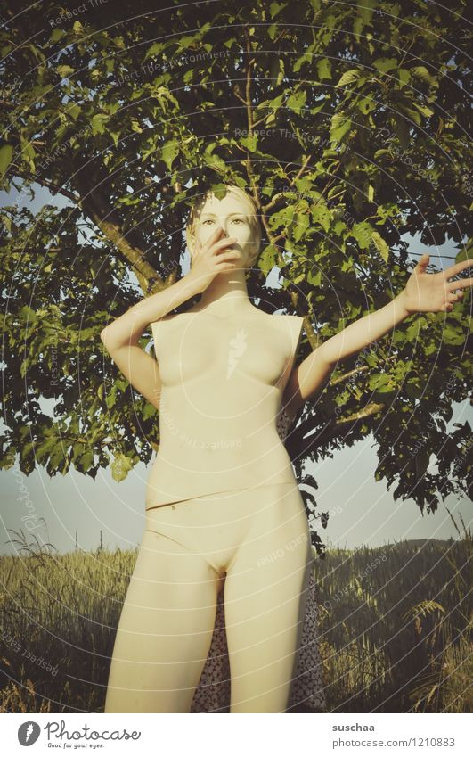 Nature Naked Summer Tree Hand Leaf Grass Legs Head Arm Mannequin