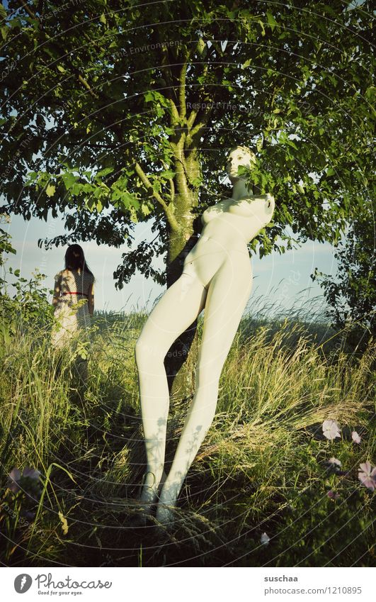 the doll .. Nature Exterior shot Tree Meadow Grass Flower Mannequin Branch Leaf Summer Legs Child