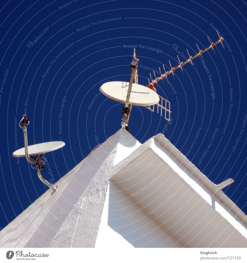 Contact (Spain) Colour photo Exterior shot Deserted Contrast Worm's-eye view Antenna Satellite dish Technology Telecommunications Media Television